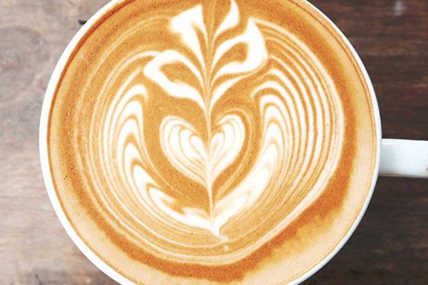 Perfect fern on flat white coffee